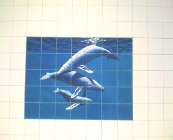 This tile mural of a  humpback whale family was beautifully painted by artist Richard Ellis. I am honored to have created this image for the artist's own bathroom. The deep blues next to  the light field tiles really make the  mural stand out. The mural blends perfectly with the surrounding field tiles.