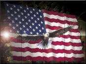 American Eagle and Flag    - Tile Mural