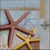 Starfish Collage    - Tile Mural