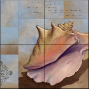 Conch Collage    - Tile Mural