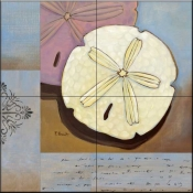 Sanddollar Collage    - Tile Mural
