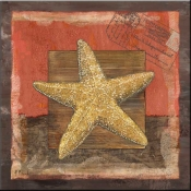 PB-Beaded Starfish - Accent Tile