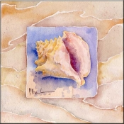 Summer Conch - Accent Tile