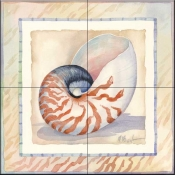 Bordered Shell Nautilus    - Tile Mural