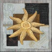 PB-Westport Sun Starfish - Accent Tile