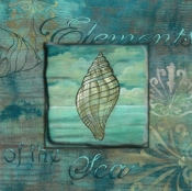CA-Coquillage 1 - Accent Tile