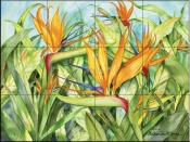 Birds of Paradise   - Tile Mural