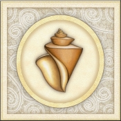 DM-By The Shore - Seashell 3 - Accent Tile