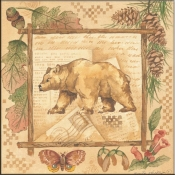 AP- Bear - Accent Tile