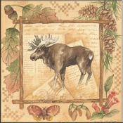 AP- Moose - Accent Tile