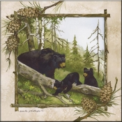AP- Black Bears - Accent Tile