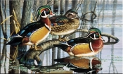Backwater Woodies-CF - Tile Mural