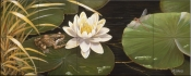 Frog and Lilly Pad II-BM - Tile Mural
