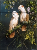 Salmon Crested Cockatoos    - Tile Mural
