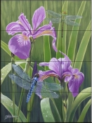 Butterflies and Irises-FS - Tile Mural
