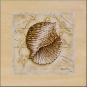 Sea Treausures I - JK - Accent Tile