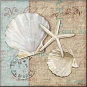 Linen Shells I - PB - Accent Tile