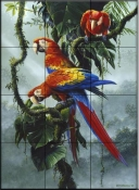 Red and Yellow Macaw    - Tile Mural