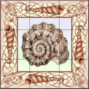 Seashell Square 1-DF - Tile Mural