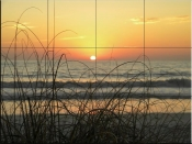 Sunset Seagrass - Tile Mural