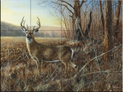 Bluff Country Buck-JH - Tile Mural