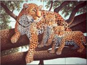 African Leapoard and Cubs - MM - Tile Mural