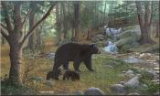 Early Morning Black Bears - MM - Tile Mural