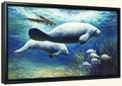 Manatee Passing Time   -Canvas Art Print