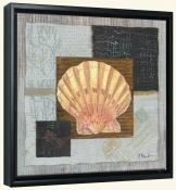 Westport Scallop   -Canvas Art Print