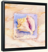 Summer Conch   -Canvas Art Print