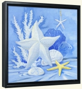Sea Star 1   -Canvas Art Print