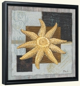 Westport Sun Starfish   -Canvas Art Print