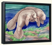 Manatee Matea   -Canvas Art Print
