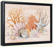 Coral Still Life Collage   -Canvas Art Print