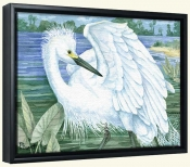 Snowy Egret   -Canvas Art Print