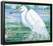 American Egret   -Canvas Art Print
