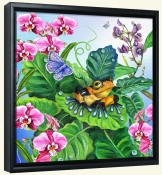 Poison Dart Frog   -Canvas Art Print
