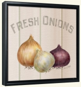LS-Fresh Onions  -Canvas Art Print