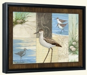 Patchwork Sandpipers   -Canvas Art Print
