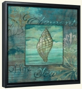 Coquillage 1  -Canvas Art Print