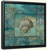 Coquillage 2  -Canvas Art Print