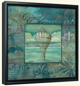 Coquillage 3  -Canvas Art Print