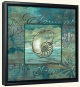 Coquillage 4  -Canvas Art Print