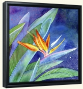 Bird of Paradise  -Canvas Art Print