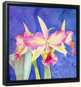 Orchid  -Canvas Art Print