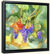 Vineyard Harvest  -Canvas Art Print