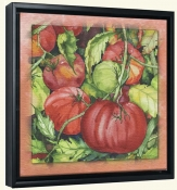Tomatoes 2 -Canvas Art Print