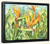 Birds of Paradise  -Canvas Art Print