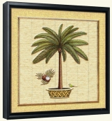 Coconut Palm 1  -Canvas Art Print