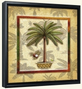 Coconut Palm 3  -Canvas Art Print